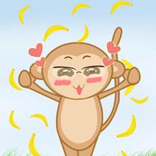 choi game Chơi với bầy khỉ