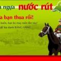 Game dua ngua nuoc rut, choi game dua ngua nuoc rut